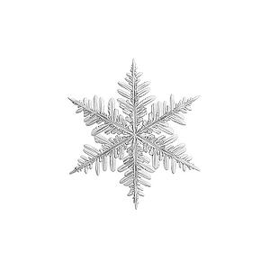 Your business is like a snowflake